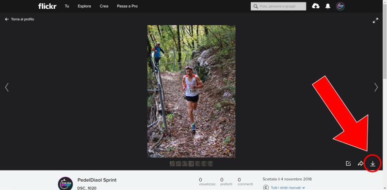 Download flickr